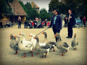 ecomusee-dAlsace--French-Moments-Retro-14resize